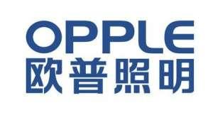 欧普照明韩宜权:公司商用板块及渠道建设方面的未来产品拓展规划激光内雕
